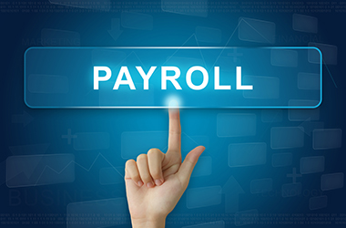 hc accountants payroll